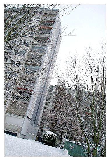 Neige Sotteville 20-12-2010 012