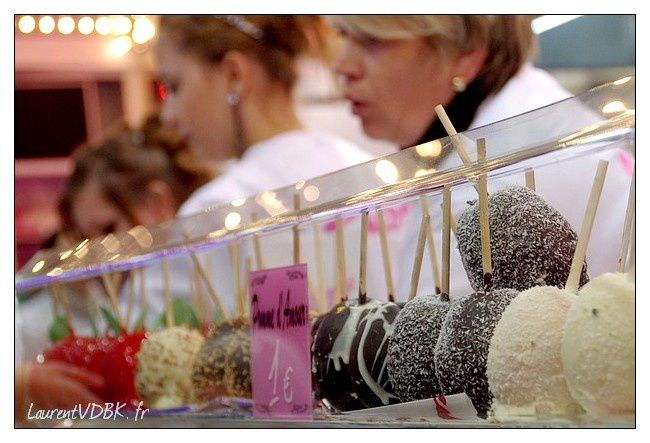 foire st romain 2011 photo0027