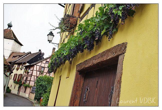 Alsace - Turckheim - 0011