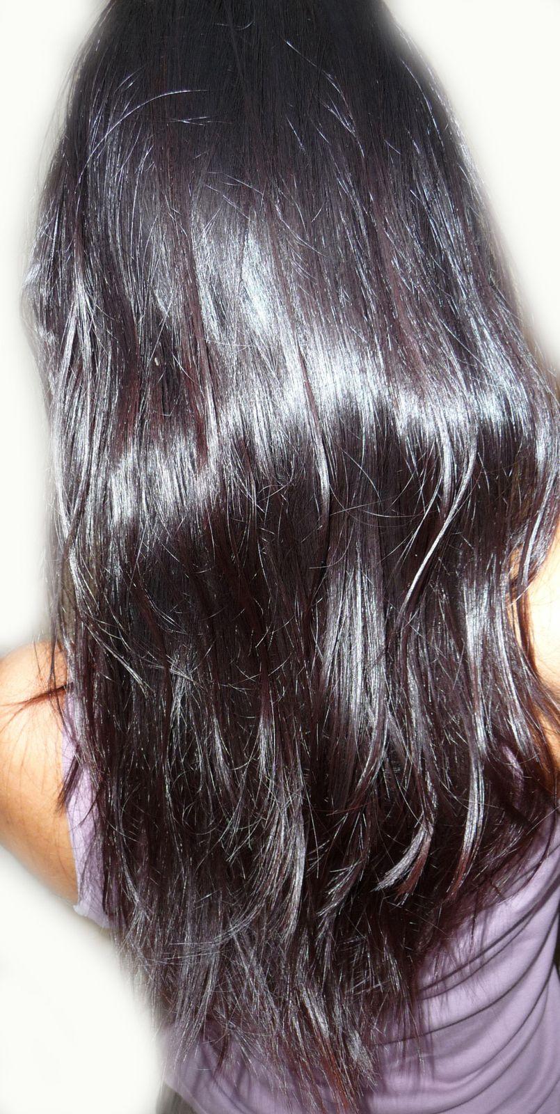 10 septembre 1er mlange de henn inde centifolia pos 5h30 puis 2me mlange 30gr - Coloration Henn Noir