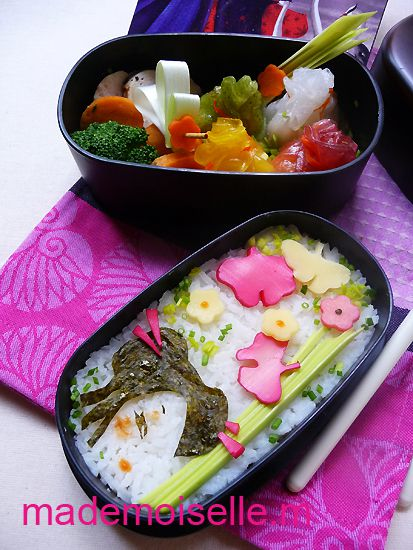 Bento Siobhan janvier 2012 03