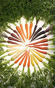 180px-Carrots of many colors