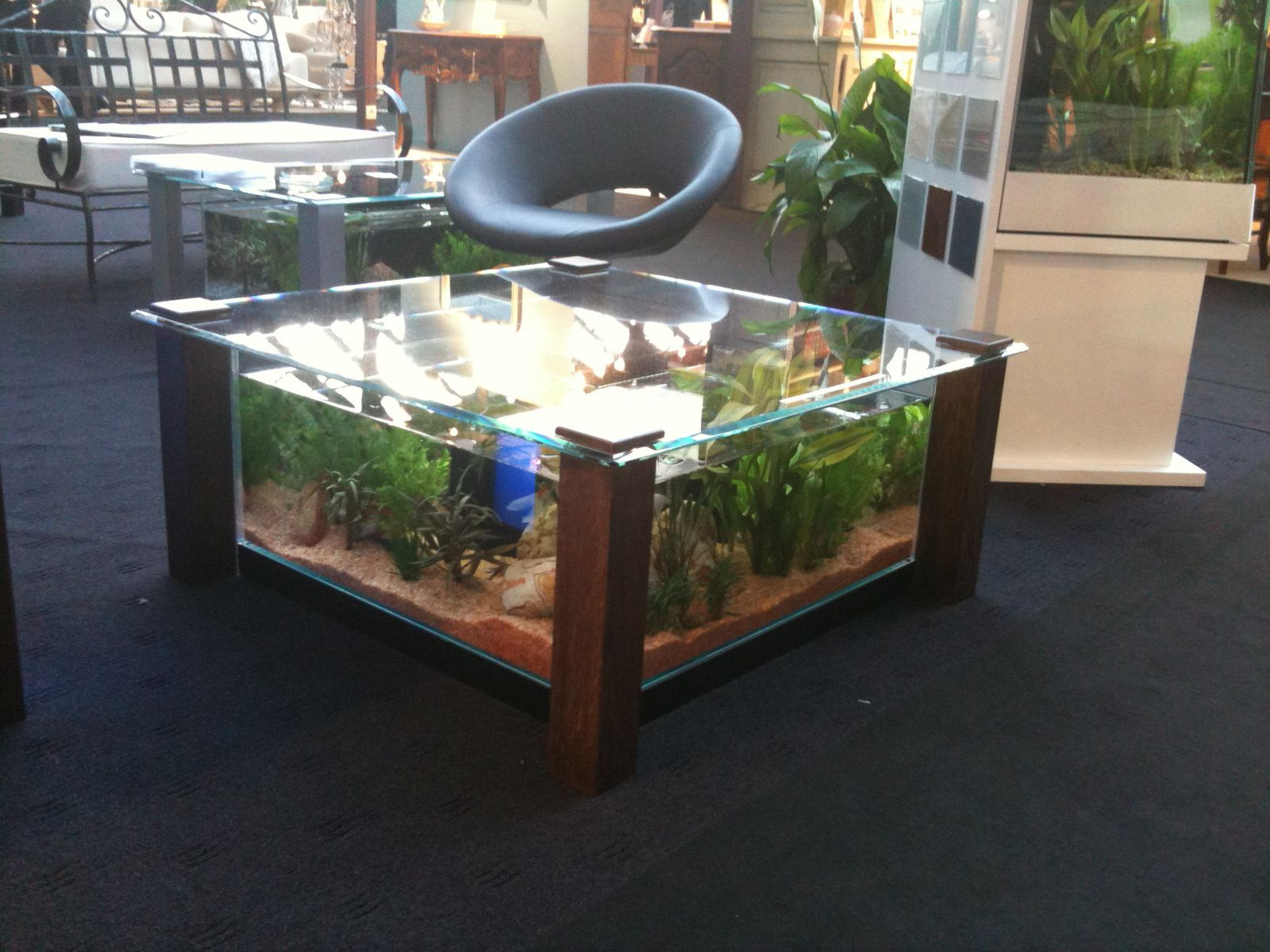 Table basse salon aquarium for Table salon aquarium