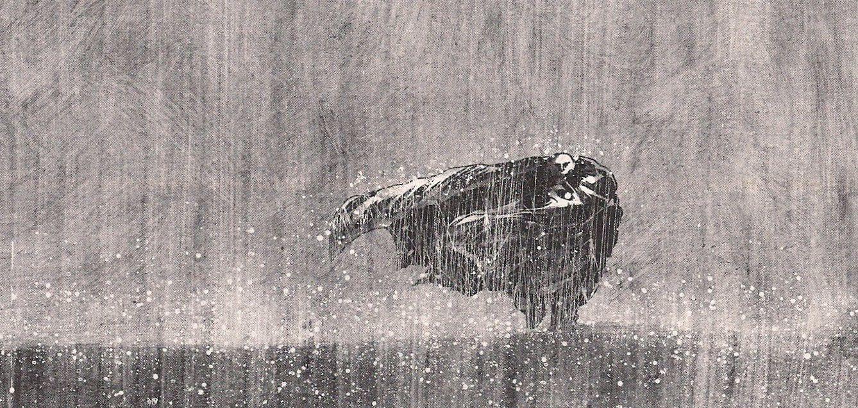 Larcenet-blast-pluie.jpg