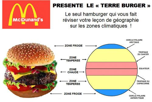Terre-Burger.jpg
