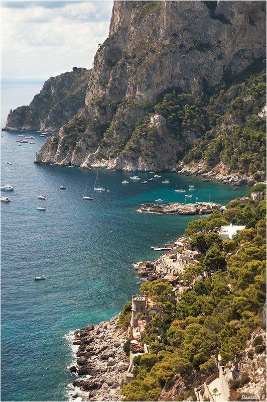 Capri 0564-800