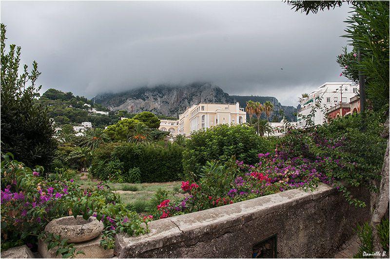 Capri 9863-800