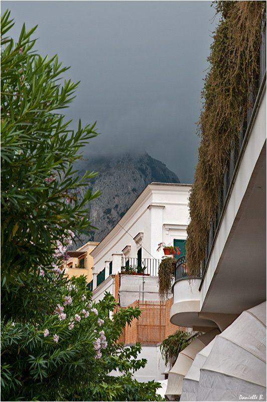 Capri 9865-800