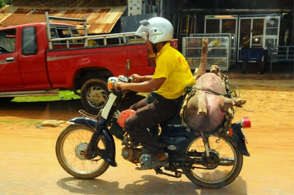 Cambodge-5534.JPG