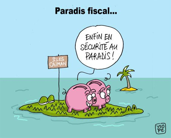 Paradis-fiscal-caiman_Ysope.jpg