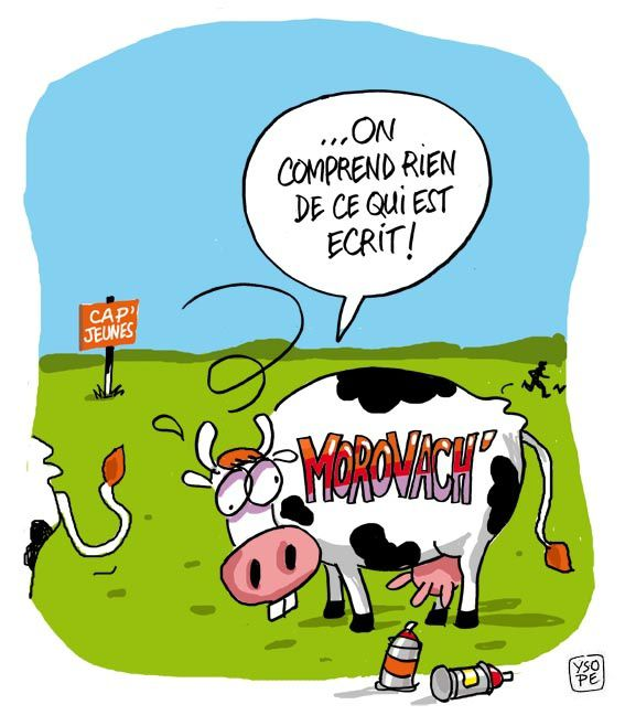 Pin humour dessins vaches page 2 on pinterest - Dessin vache humour ...