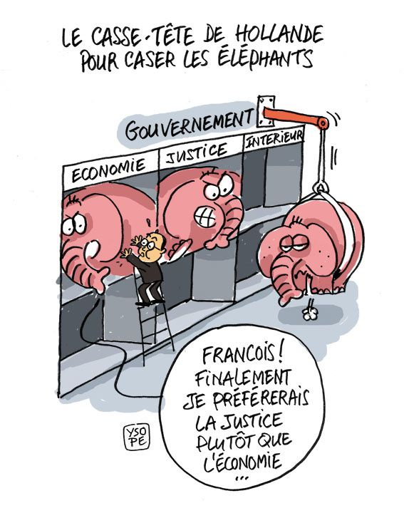 Hollande-case-elephants.jpg