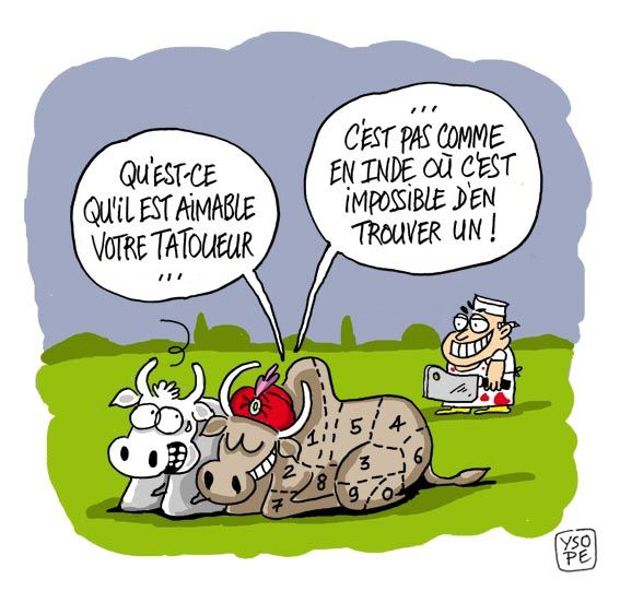 Pin je suis folle et alors on pinterest - Dessin vache humour ...