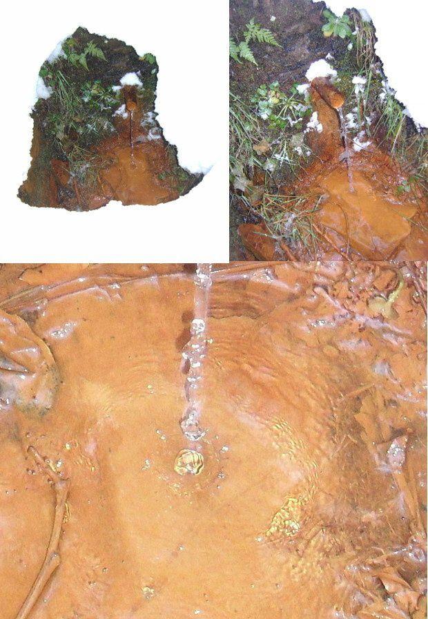 fontaine de la maine 9mars2010