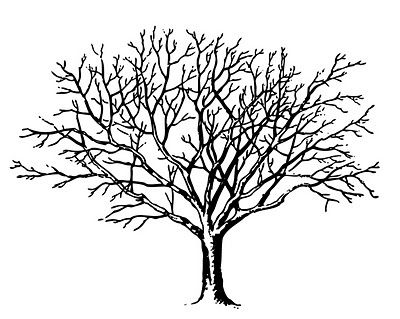 req-tree-spooky-graphicsfairy004c-copie-1.jpg