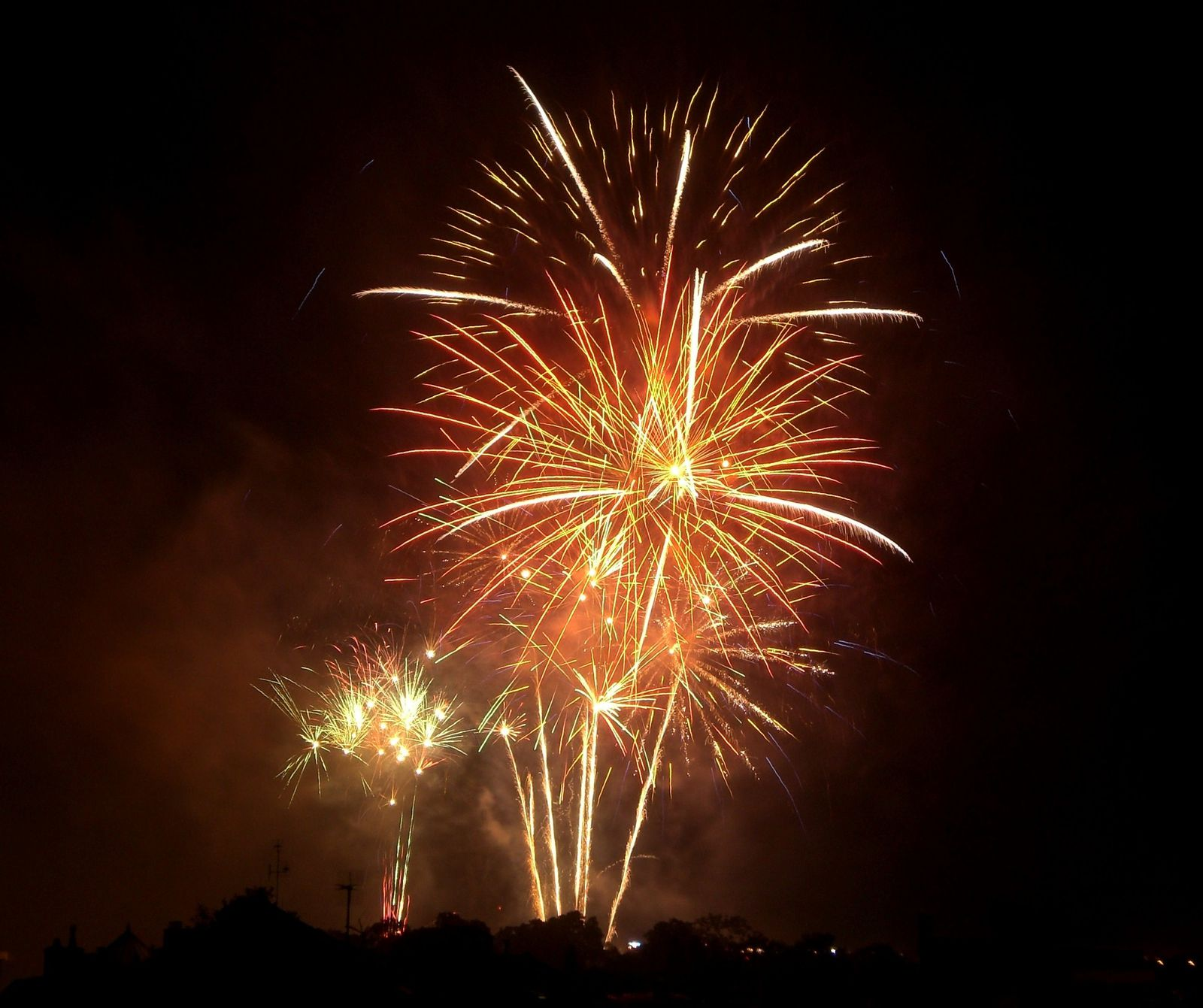 Bouquet-final-feu-d-artifice-2010.JPG