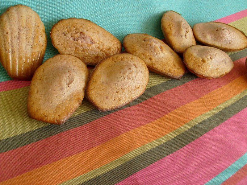 madeleines_roses_009