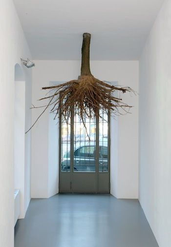 A-tree-with-roots--2010--by-Henrik-Hakansson.jpg