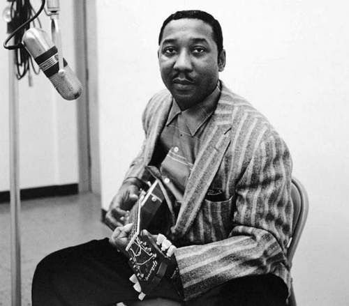 muddy-waters.jpeg