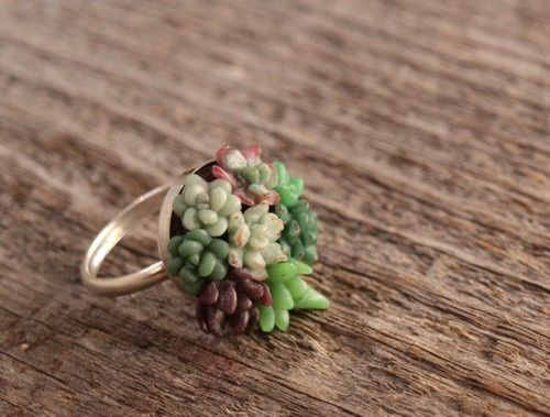 tiny-succulent-garden-ring.jpeg