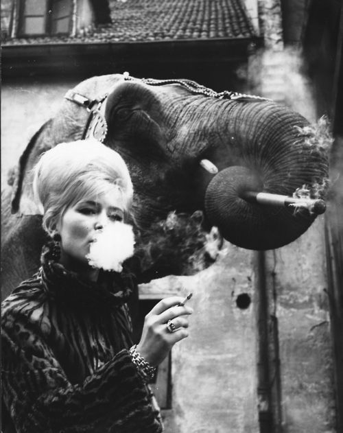 Elephant-tamer-Monique-Holzmuller-having-a-cigarette-with-.jpeg
