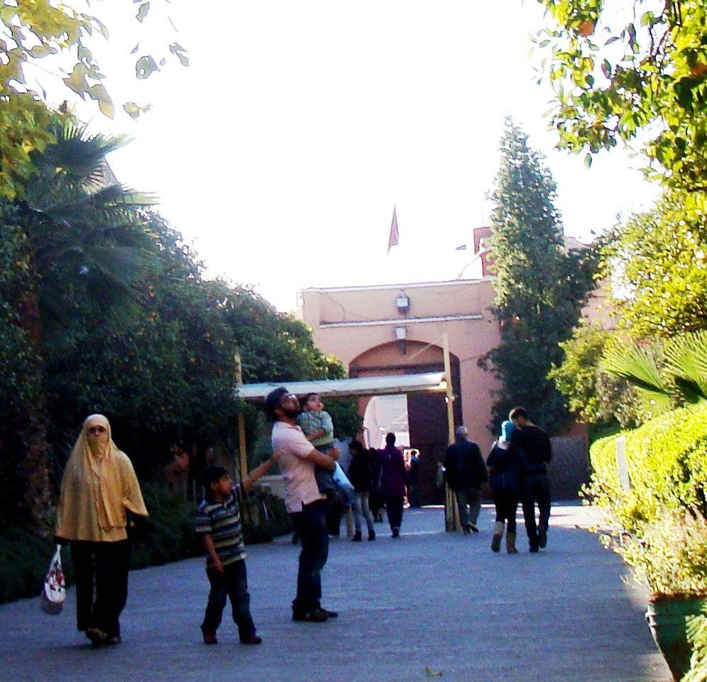 La médina au quotidien+quelques oeuvres exposées au Musée de Marrakech