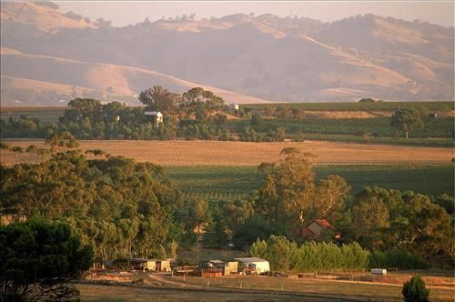 Barossa_Valley_02.JPG
