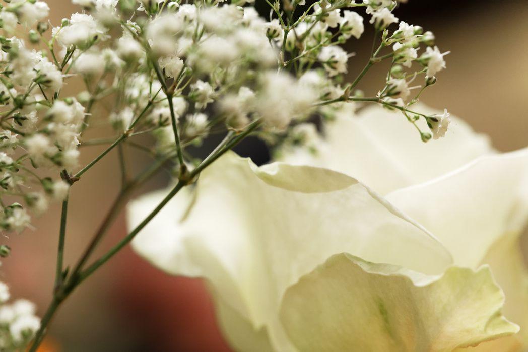 Dans un bouquet