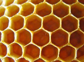 Gel douche maison la cire d 39 abeille et lavande for Abeilles dans la maison