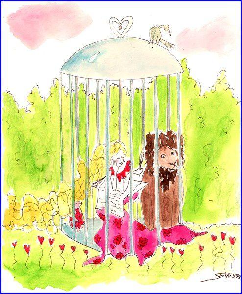 cage soakette s