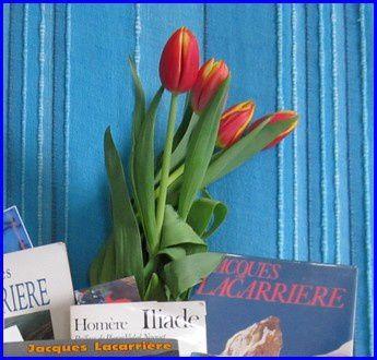 bouquet--hu-1-s.jpg