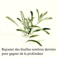 romarin-copie-1.jpg