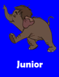 Junior.png