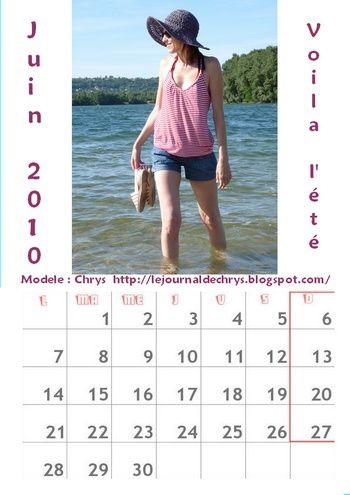 calendrier-3-juin-2010-d-clics-disa.jpg