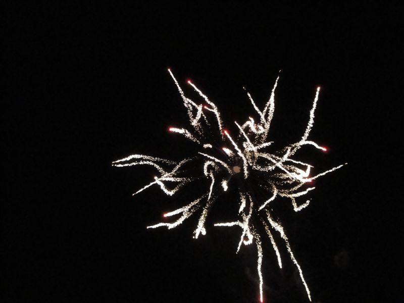 Fête de la Mothe 2010, le dimanhe 22 août 2010. Photos : Mme Jenny TRUONG