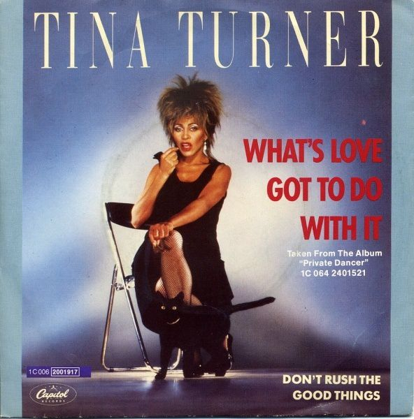 tina_turner-whats_love_got_to_do_with_it-1-.jpg