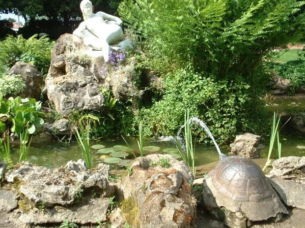 fontaine-tortue2.JPG