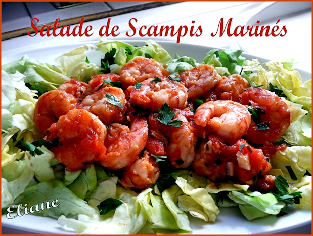 Salade de scampis marin s parfums de campagne for Salade pour accompagner poisson