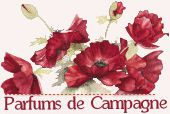coquelicots pdc