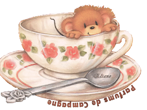 pdc tasse ours