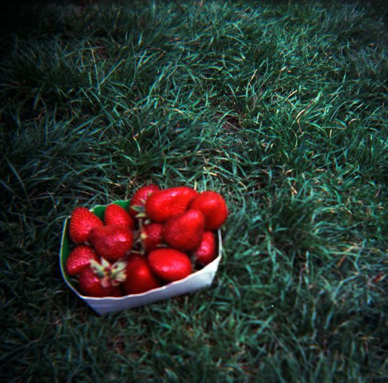 strawberries100705.jpg