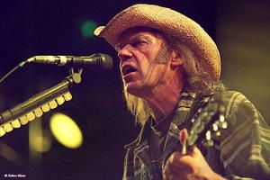 neil_young-02.jpg