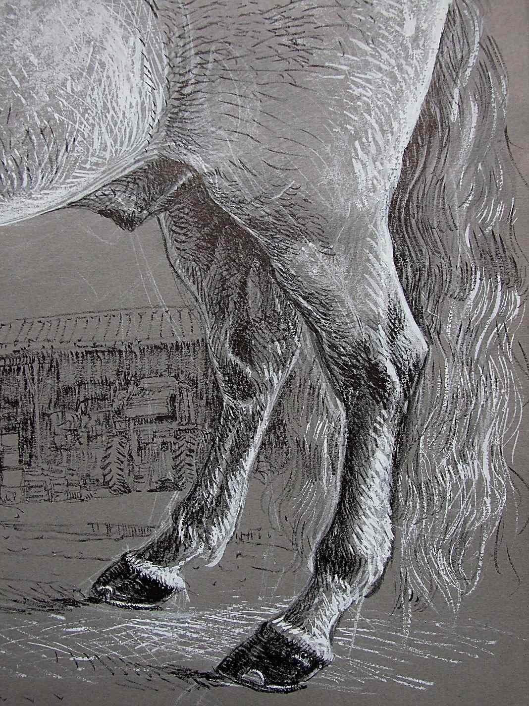 Kiko, cheval espagnol Technique mixte 50X65 nov 2011 Et