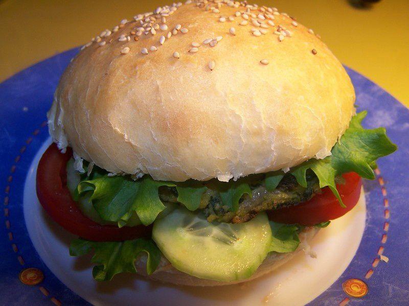 hamburger_v_g_tarien