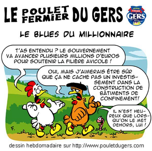 Clairvoyant Le Poulet Du Gers Le Blog De Le Pic Vert