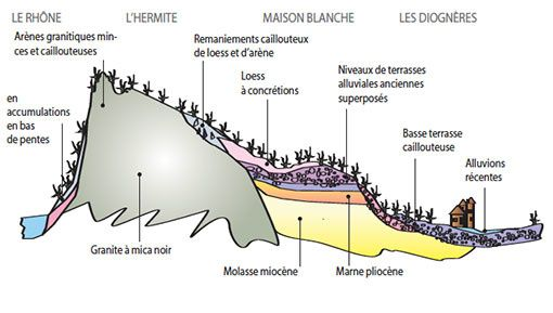 coupe-geologique-cote-rotie-1.jpg