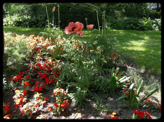 Botanique-4.jpg