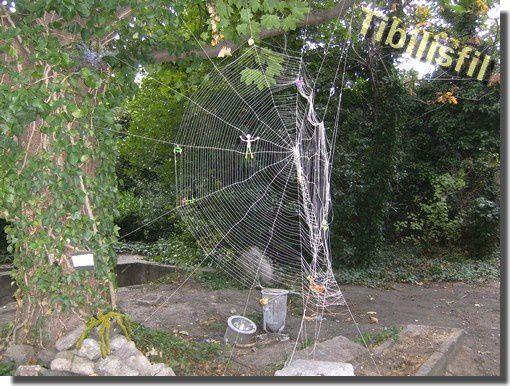 moulin_vent_Bruxelles_Evere_jardin