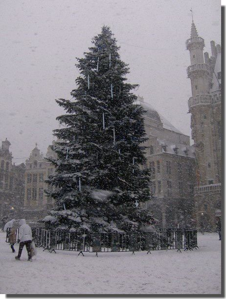 Sapin_neige_Grand_Place_Bruxelles