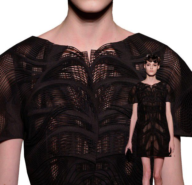 IRIS-VAN-HERPEN-VOLTAGE-HAUTE-COUTURE-PARIS-SPRING-2013--1-.jpg